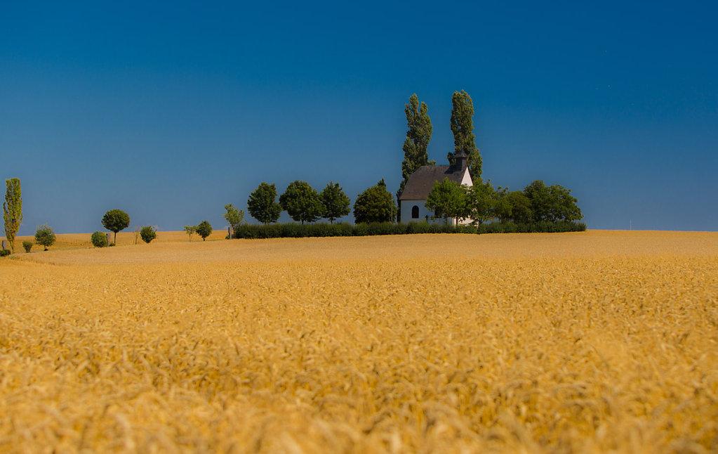 Ardennen Tour