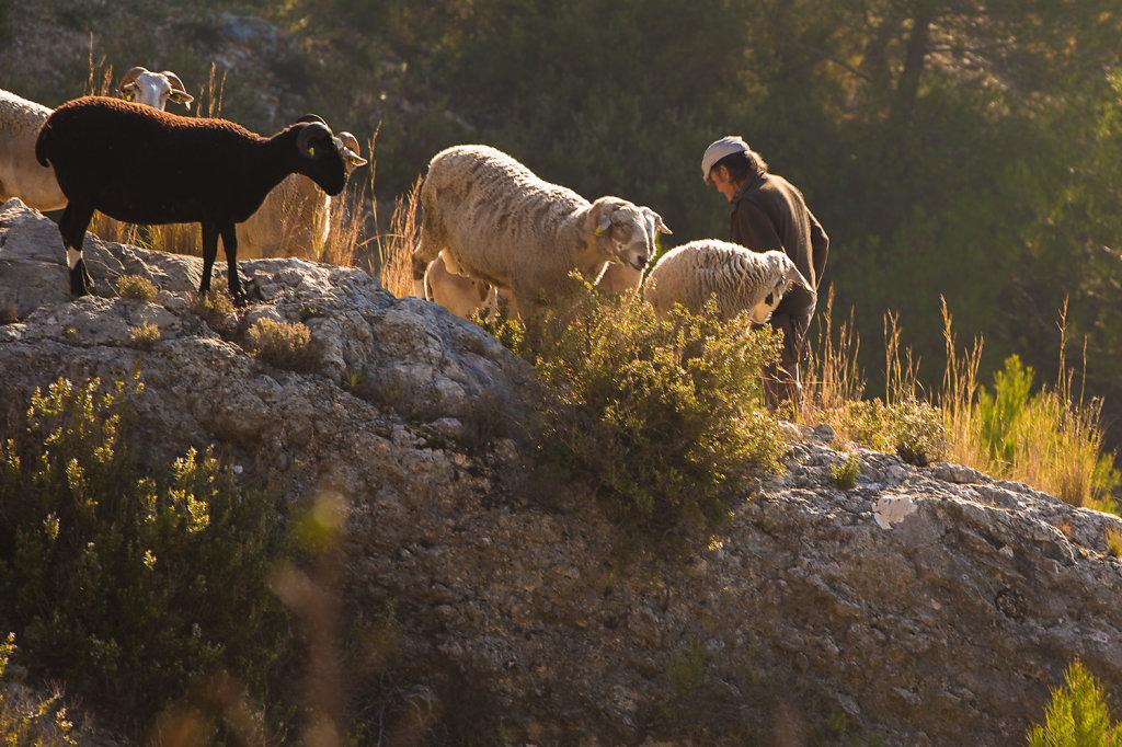 Spanien-002.jpg